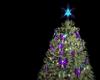 P/B Christmas Tree 2017