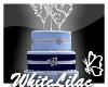 WL~ RapNSyn Wedding Cake