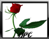 Red Rose Sticker