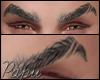 ♂ Paradigma Eyebrow 2