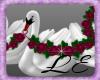 Beautiful Rose Swans 1