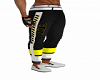 New Warrior Pants