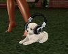 iRock DJ Puppy