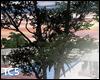 Animated tree 2