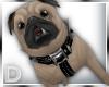 D/ Pug !!!