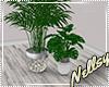 [Nel] L.A. Plants II