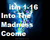 Into The Madness
