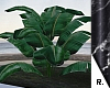 e Plant 3