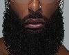 Beard ADD On!
