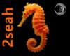 [2seah] Seahorse Part V2