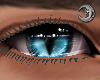 Feline Messenger Eyes M