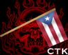 !PS! Puerto Rico Flag