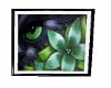 Black Cat Art v2