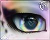 0| Gamur | Eyes
