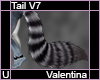 Valentina Tail V7