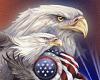 TF* American Eagle