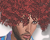 😆CURLY RED FRO-M