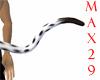 Dalmation Tail