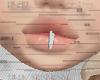 x Silver Lip x