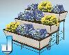 Violets Planter