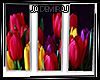 𝕁 Yuva Tulip Canvas