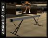 (TT) Gym Balance Beam