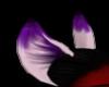 dark purple & white ears