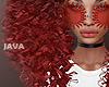 J- Florinia red