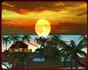 !    TROPICAL ISLAND