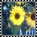 sticker_17637054_31844034