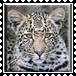 sticker_29059225_45352969