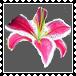 sticker_21920493_47510148