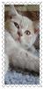 sticker_2500308_37905847