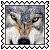 sticker_12807896_30119926