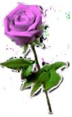 sticker_5357435_39090723