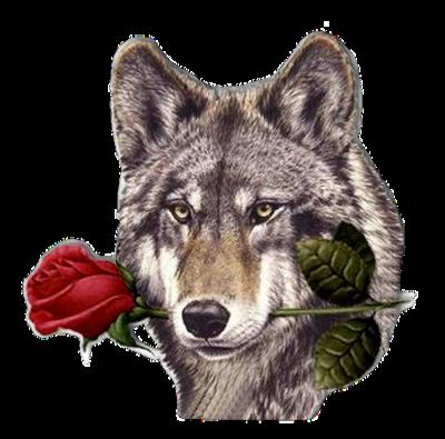 Sticker_227632802_14
