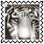 sticker_10402364_34579169