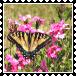 sticker_17637054_31458183