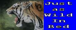 sticker_5124141_13159778