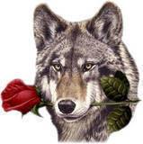 sticker_159994468_196