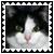 sticker_2500308_32624548