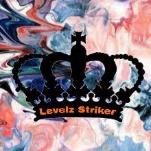 Guest_LevelzStriker