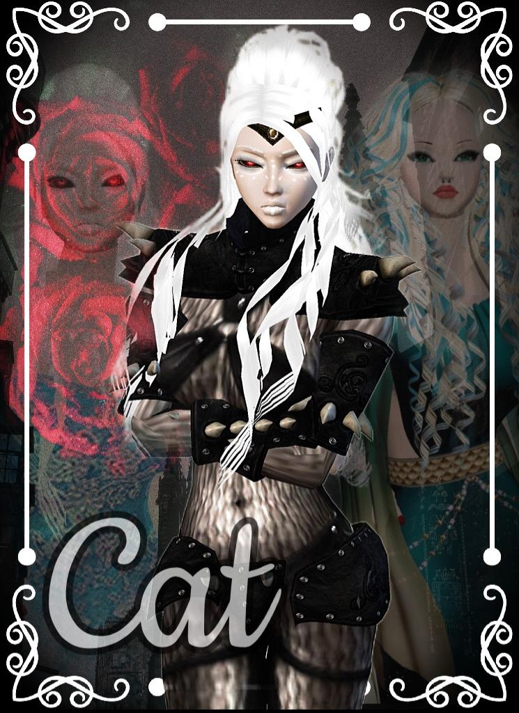 PrincessCatNightroad